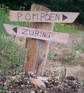 b01_pompoen_zuring